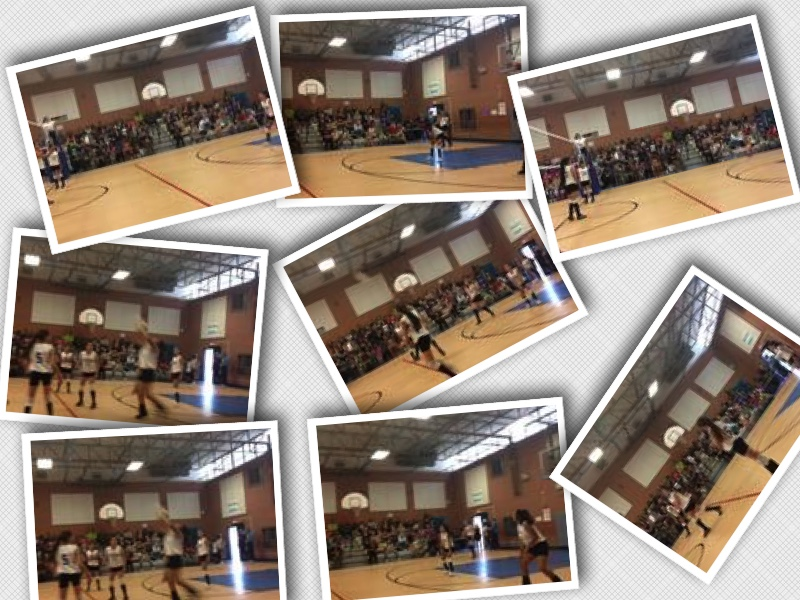 Girls Volleyball Collage 2
