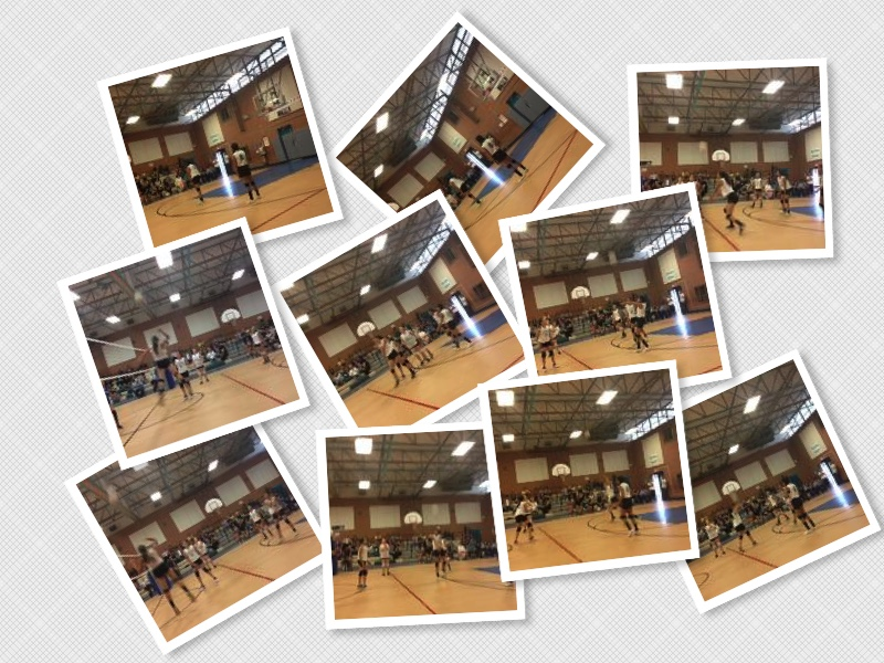 Girls Volleyball collage
